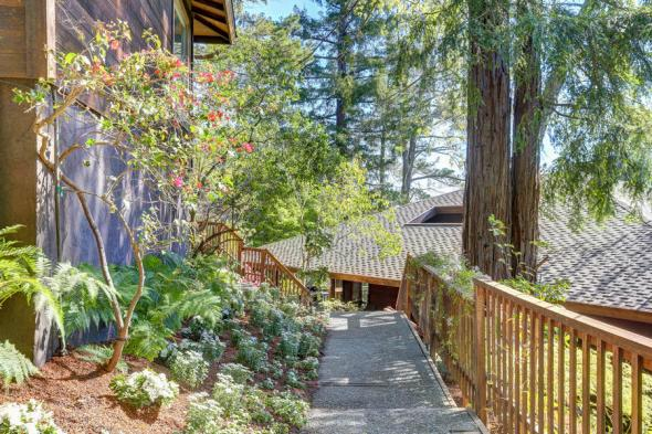 360 Wilson Way Larkspur #3