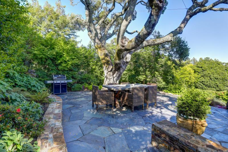 321 Summit Avenue, Mill Valley  #38
