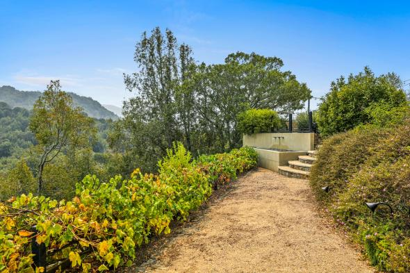 65 Summit Road, San Anselmo #46