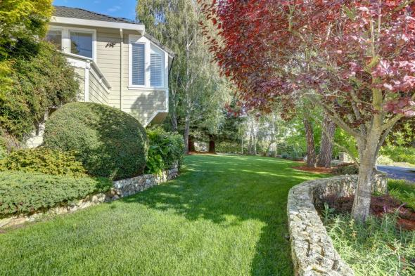 115 Underhill Road Mill Valley #3