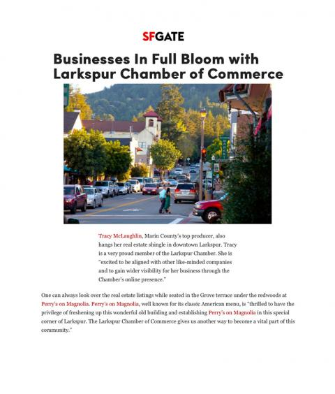 Businesses In Full Bloom with Larkspur Chamber of Commerce